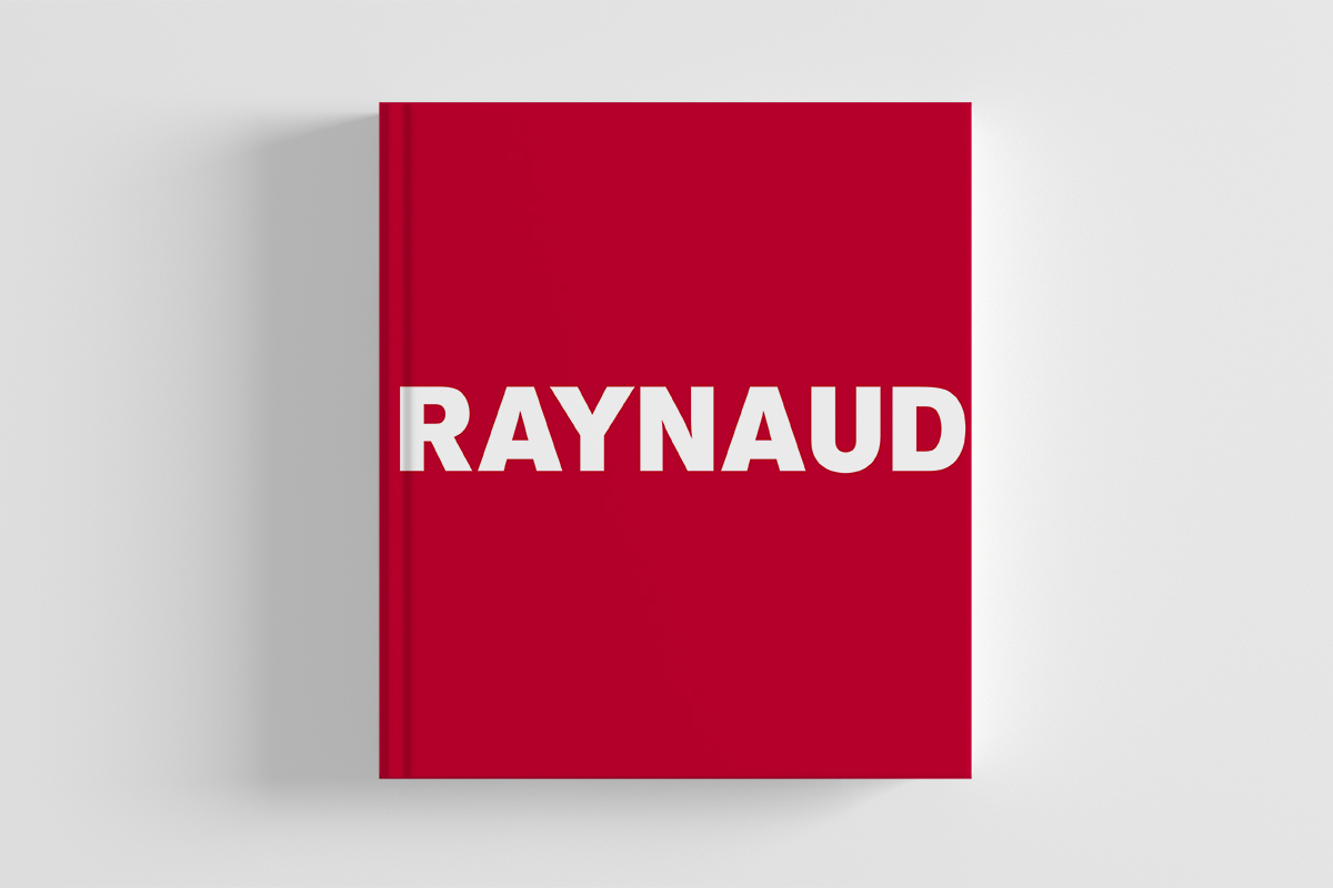 livre Jean Pierre Raynaud