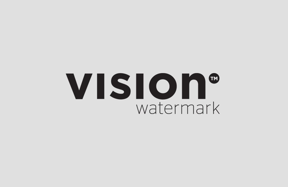 Logo Vision watermark